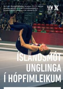 Íslandsmót unglinga í hópfimleikum